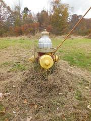 MH Valve & Fitting Co. - 129 Regent - Bernardston, MA (nhhydrants) Tags: hydrant bernardston massachusetts