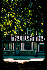 Half-timbered house, Rouen, France (gwpics) Tags: france halftimbered building historic vertical housing rouen construction french house history architecture environment exterior normandy tree heritage film outdoors outside upright analog analogue archive