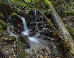Little Creek (ValeTer_) Tags: water nature stream waterfall body vegetation reserve watercourse creek wilderness nikon d7500 state park usa wa wallace falls washington landscape statepark wallacefalls wallacefallsstatepark