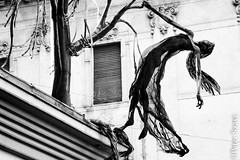 She came back to haunt (Peter Szasz) Tags: haunt woman statue object halloween grainy spooky ghostly ghost undead creepy windy hair thin skeleton barefoot claws tree roots branches skirt transparent city street buildings sculpture hanging arms art hungary magyarország budapest falling october sad moody monochrome black blackwhite outdoors window urban travel roof dark