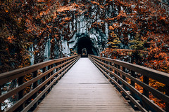 Othello Tunnels (Top KM) Tags: canada british columbia travel explore no person outdoors tunnels tunnel bridge beautiful othello fall autumn 500px vancouver bc park hike rock exploration landscape stone tourism old historic provincial