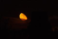 Moonrise 29 Oct 2018 (Sculptor Lil) Tags: moonrise moon waninggibbous london canon700d