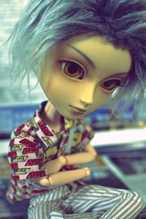 S(e)oul (Niji ♪) Tags: pullip taeyang yuni kiyomi blizzard timulus