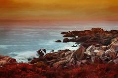 Autumn Coast (lensletter) Tags: newengland maine coast coastline rocks ocean waves water theawardtree tmi photoshop photomanipulation autumn fall fallcolor lensletter