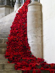 Wells Cathedral, WWI Centenary (jacquemart) Tags: wellscathedral wwicentenary poppies poppyday armistice crochet britishlegion somerset