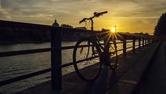 bicyclette Paris (laurent.triboulois) Tags: sun sky bicyclette soleil rayon yellow jaune fleuve river paris