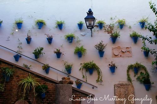 "Córdoba. Rincones. • <a style=""font-size:0.8em;"" href=""http://www.flickr.com/photos/26679841@N00/30191616597/"" target=""_blank"">View on Flickr</a>"