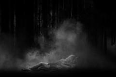 (赤いミルク) Tags: blackandwhite monochrome ビンテージ ビニル black romantism gothic コントラスト 赤 red ウォール wall ゴースト 悪魔 ghost 友人 ドア doors 贈り物 地平線 horizon モノクローム 暗い street 壁 surreal intriguing 生活 life door texture 秋 雨 overpast 賞賛 光 影 白黒 幽霊 いかだ ダンス shadows smoke