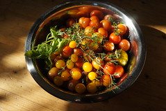 Cherry tomatoes (Two_tango) Tags: tomaten tomatoes heirloom garden ernte harvest gemüse food crop veggie