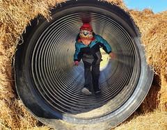 Through the Hay (SurFeRGiRL30) Tags: kid haystack haybale farm fall playing play fun tunnel tube autumn recreation wintercoat chilly cold winterwear nj heavenhillfarm newjersey vernon vernonnj circle mine myson