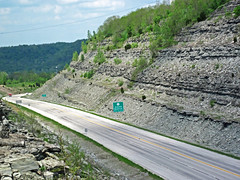 Limestone & shale (Bellevue Limestone over Fairview Formation over Kope Formation, Upper Ordovician; Maysville West roadcut, Kentucky, USA) 3
