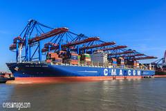 Containerterminals (resuimages) Tags: elbphilharmonie germanunityday hafencity hamburg deutschland deu