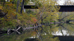 Cuyahoga River and train bridge (jwroach) Tags: autumn fall colors rocks cuyahoga river yellow orange red leaves reflection water train bridge trail towpath
