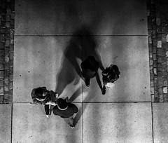 shadows converge (rick miller foto) Tags: 17mm om10 olympus overhead stories street crowd shadows mono monochrome bw blackandwhite 2018 canada toronto nuitblanche