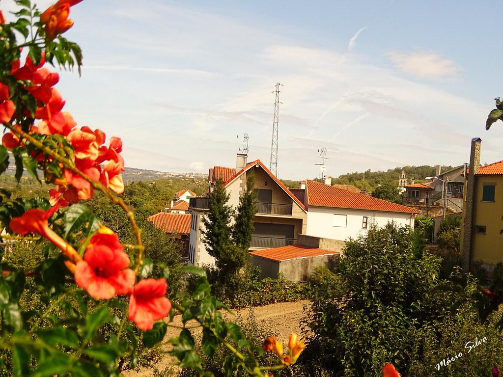 Águas Frias (Chaves) - ... vislumbrando as casas da Aldeia por entre as flores  garridas ...