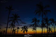 """""""AFRICA"""" PALAVRAS PARA QUÊ? _CHOCAS_NAMPULA_MOÇAMBIQUE (paulomarquesfotografia) Tags: africa palavras para quê chocas nampula moçambique pentax k5 smc 18135mm paulo marques mozambique por do sol sunset trees arvores estrelas stars céu sky night noite paisagem landscape lago lake"""