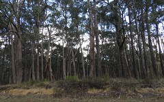 Lot 35, Cowans Drive, Dales Creek VIC