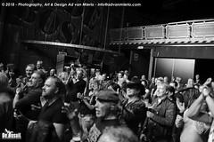 2018 Bosuil-Het publiek bij Eric Steckel en The Imperial Crowns 1-ZW