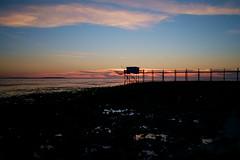 Reflets épars (Fabrice Denis Photography) Tags: seascapephotography france charentemaritime sunsetphotographer carrelet coastalphotography cabanedepêcheur yves sunsetphotos sea nouvelleaquitaine sunsetpics ocean coastal oceanphotography sunsetphotography réservenaturellenationaledumaraisdyves seascapephotographer sunset seascapephotos seascapes fr