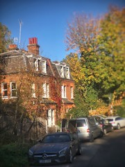 Welcome to the Vale of Health (marc.barrot) Tags: autumn street uk nw3 london hampstead valeofhealth
