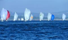 Empopados (alfonsocarlospalencia) Tags: bahía santander acuarela spy empopados regata blanco azul rojo j80 velas cantábrico septiembre proas pintura nordeste