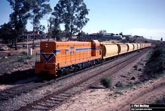 3793 A1503 11 XW to Kwinana Rockingham Rd 8 June 1983 (RailWA) Tags: railwa philmelling westrail 1983 a1503 xw rockingham rd