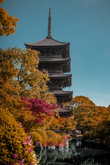 Kyoto2 (Yesidster) Tags: japan travel nature contrast photography asia cherryblossoms mtfuji photo aov architecture design home urban