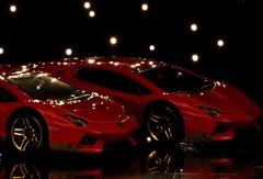 Lamborghini Aventador Miura Homage (mpalmer934) Tags: perfect match macro mondays hot wheels