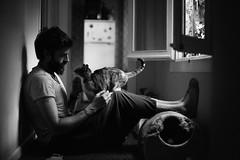 With super Muffin! (Raúl Barrero fotografía) Tags: seleccionar cat gato pet mascota home hogar