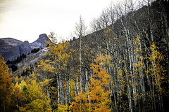 Colorado_fall_ouray