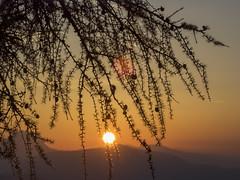 PA140015 (turbok) Tags: berge ennstal landschaft sonnenaufgang stimmungen tausing