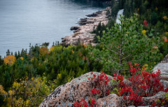 Acadia National Park (willsdad48) Tags: maine newengland acadianationalpark nationalparks landscape atlantic ocean seascapes sunrise sunset waves hiking nature travel travelphotography fujifilm xt3 fujifilmxseries