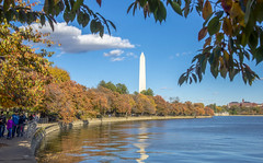Classic view, autumn (Tim Brown's Pictures) Tags: washingtondc nationalmall tidalbasin outdoors autumn fallcolors fallfoliage travel orange water visitors cherrytrees washingtonmonument blueskies clouds seasons washington dc unitedstates