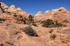Lost City's east side (Chief Bwana) Tags: az arizona lostcity pariaplateau vermilioncliffs navajosandstone psa104 chiefbwana