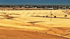 Port Clinton and St Vincents Gulf, Yorke Peninsula, South Australia (Red Nomad OZ) Tags: australia southaustralia portclinton yorkepeninsula farm agriculture field rural country countryside