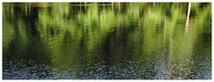 ponderings (revisited) (larrynunziato) Tags: naturalreflections pondreflections natureabstract manualfocus abstractphotography abstractnature