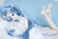 Lazy Miku (Kyane) Tags: doll dolls dollfie dollfiedream miku mikuhastune snowmiku bed blue volks dd bjd vinyl limited