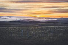Sunrise in Aubrac (Chloé +++) Tags: sunrise lever de soleil sun aubrac france occitanie wild clouds sky ciel nuages colors color colorful couleurs orange brume mist field champs canon eos400d 50mm landscape paysage