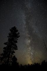 Milky Way Silhouette Chippewa Co MI Sept 2018_E1U1635 (www.sabrewingtours.com) Tags: astronomy night sky star gazing michigan up chippewa county brian zwiebel bz sabrewing nature tours snt milky way