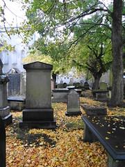 Fallen Leaves (Ian Robin Jackson) Tags: graveyard leafs fallen autumn sony scotland fall colours rain atmospheric cemetary graves sombre mood