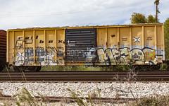 (o texano) Tags: houston texas graffiti trains freights bench benching mayor wyse d30