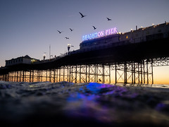 Brighton Place Pier at Dusk (lomokev) Tags: file:name=181022omdem5220522edit brighton pier brightonpier palacepier olympusomdem5 olympus omd em5 olympusomd seagulls seagull dusk reflection purple birds seascape wildswimming swimming
