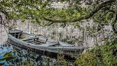Jezioro Czarne, Suwalszczyzna (georgewroc) Tags: podlasie podlachia polska poland polen pologne europa europe eu lumix fz200 outdoor landscape tree drzewa hdr lódka łódź boat suwalszczyzna jezioro lake