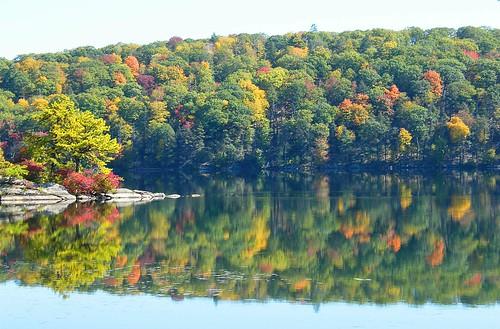Sterling Lake Reflection