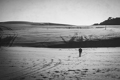 Solo Traveler (Schwaco) Tags: piha new zealand sand beach coast rock rocks rocky grass green travel travler treeline vegetation jacket hike trek walk explore exploring pihanewzealand newzealand