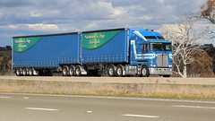 Lachlan Exit (4/6) (Jungle Jack Movements (ferroequinologist)) Tags: nicholson page kenworth western star cream maclean pottsville tahmoor lachlan valley way hume highway nsw new south wales yass australia bowning hp horsepower big rig haul haulage freight cabover trucker drive transport carry delivery bulk lorry hgv wagon road nose semi trailer deliver cargo interstate vehicle load freighter ship move motor engine power teamster truck tractor prime mover diesel driver cab wheel double b grunt k200