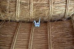 Paper Crane and Rice Bag (Eridanus 21) Tags: paper crane rice bagツルと米俵 cran origami bag おりがみ 折り鶴 ツル 折り紙 米俵 origamiphoto米俵 ricebag papercrane origamiphoto