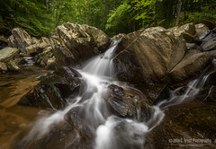 Scott's Run Stream (jcernstphoto) Tags: waterfall stream difficultrun greatfalls virginia scottsrun nature forest