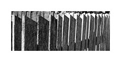 Jerusalem Mill Fence... (roylee21918) Tags: harford county maryland monochrome blackwhite dxo photolab