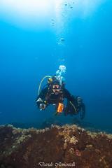 IMG_1453 (davide.clementelli) Tags: diving dive dives padi immersione immersioni ampportofino portofino liguria friends amici underwater underwaterlife sottacqua